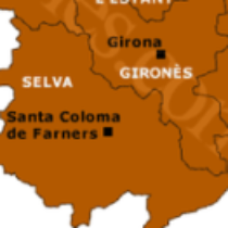 Logotip del grup Gironés+La Selva wassap amicsdegirona